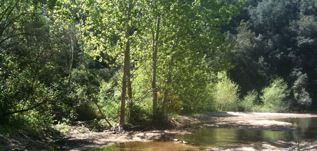 Парк Монтнегре и Эль-Корредор (Барселона).