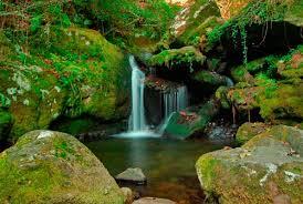 Природный парк Fragas do Eume (Ла-Корунья)