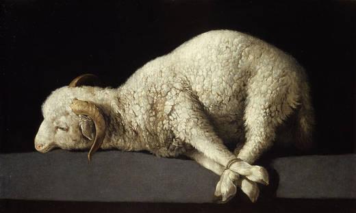 Agnus dei (Zurbarán)