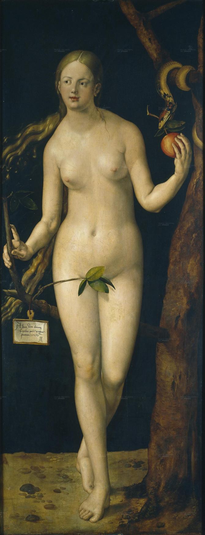 Eva (Dürer)