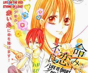 Inochi Mijikashi, Koise me Furyou Shounen! (sleeve)