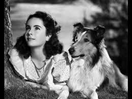 Elizabeth Taylor - Lassie