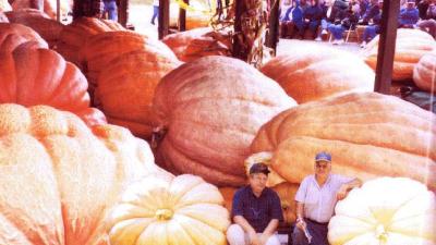 Frutas e legumes gigantes