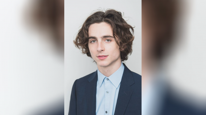 Best Timothée Chalamet movies