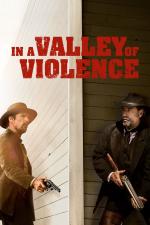 Dolina przemocy