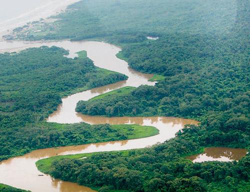 Биосферный заповедник Рио Платано (Гондурас)