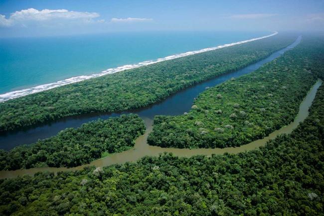 Национальный парк Тортугеро (Коста-Рика)