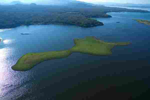 Lake of Güija (El Salvador-Guatemala)