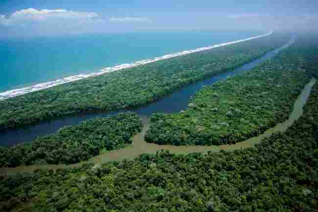 Tortuguero National Park (Costa Rica)