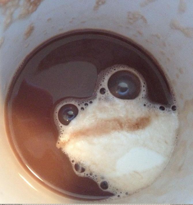 ¿Hay algo en este café?