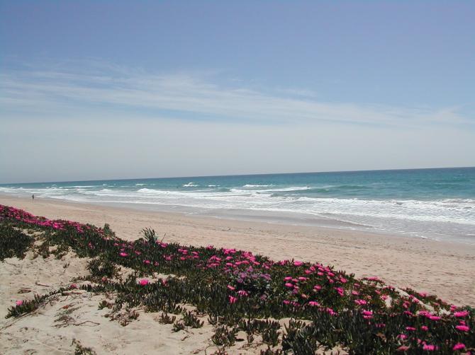 Пляж Пальмар в Вехере (Кадис)