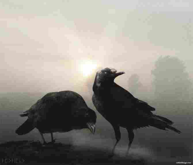 Hugin and Munin
