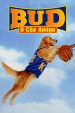 Bud, O Cão Amigo