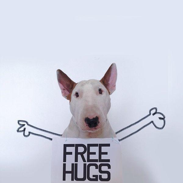 無料抱擁!