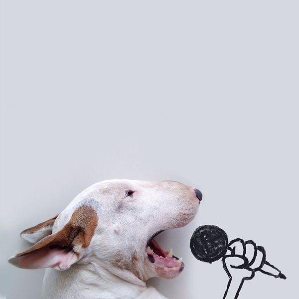 Jimmy el cantant
