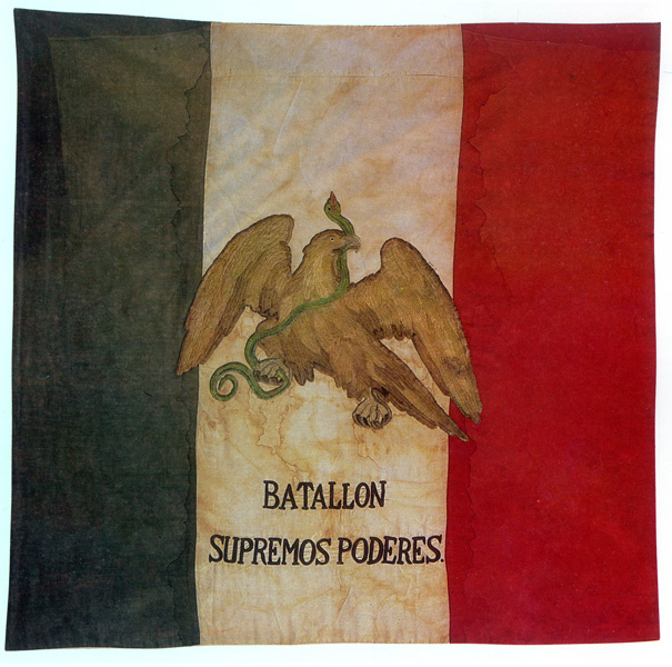 Flag of the First Infantry Battalion (Flag of Supreme Powers)