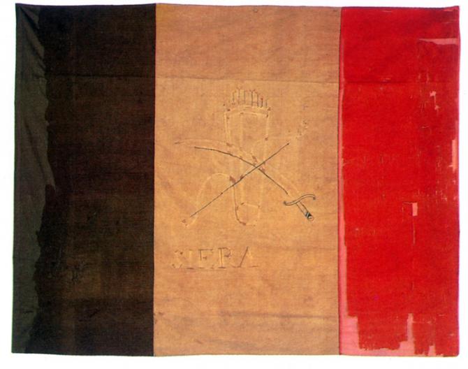 Tricolor flag