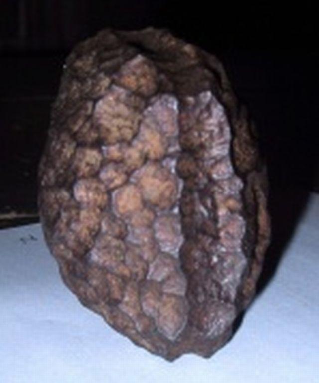 Ferro Wolfsegg