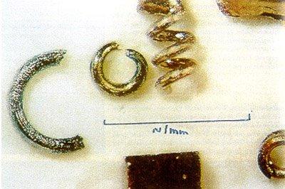 Objetos microscopicos de Narada