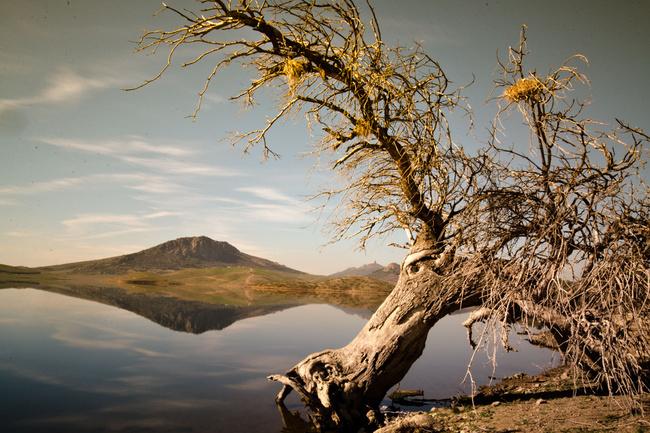 Водохранилище де Орельяна (Бадахос)