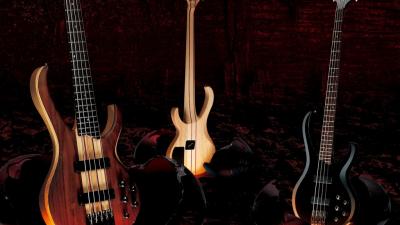 Лучшие джазовые басисты мира
