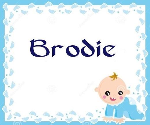 Brodie