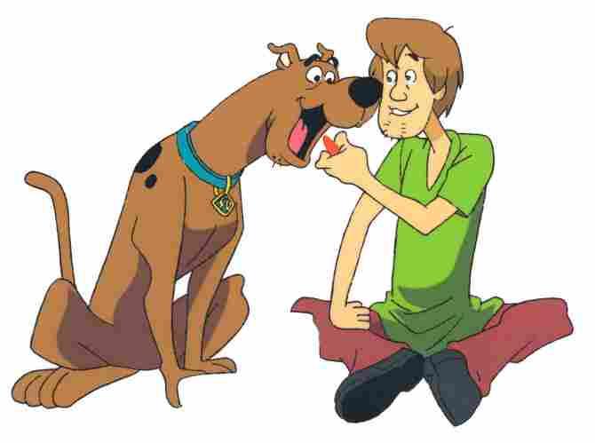 Scooby Doo y Shaggy