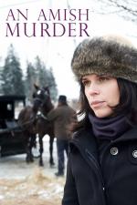 An Amish Murder