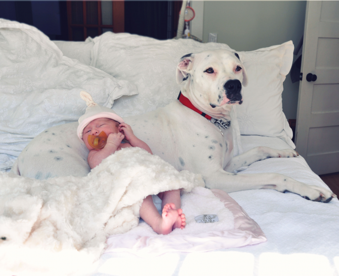 Bescherming van de baby