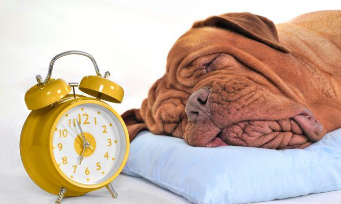 Hotande väckarklocka