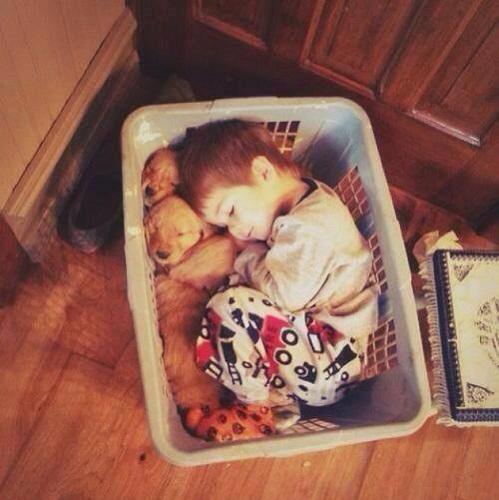 Ik wil met mijn puppy's slapen