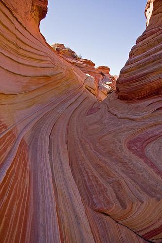 Rock in undulating form (Arizona of the USA)