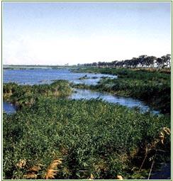 Природный парк Эль Фондо