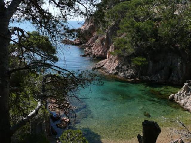 Aigua Xelida de Tamariu strand (Girona)