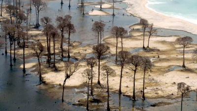 Os 10 tsunamis mais devastadores da história