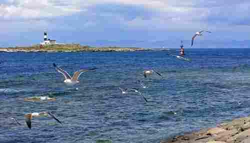 Tsugaru Strait