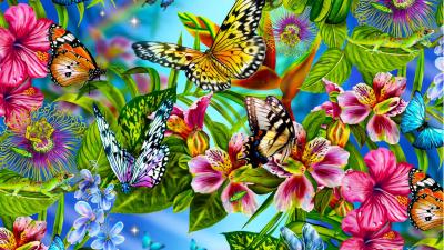 Les plus beaux papillons du monde