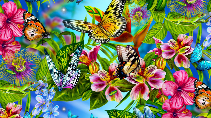 The most beautiful butterflies in the world