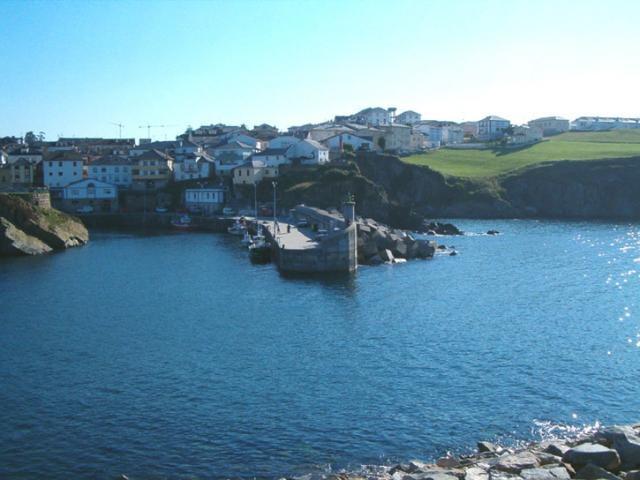 Vega Harbor