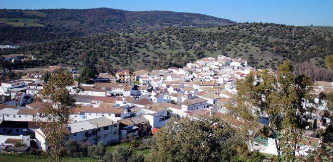 La forêt (Sierra de Cádiz)