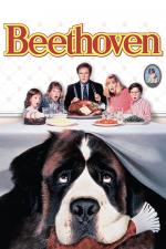 Beethoven - O Magnífico