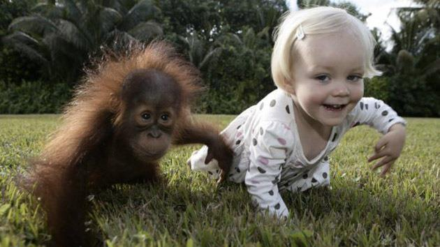 Bayi dengan monyet anda