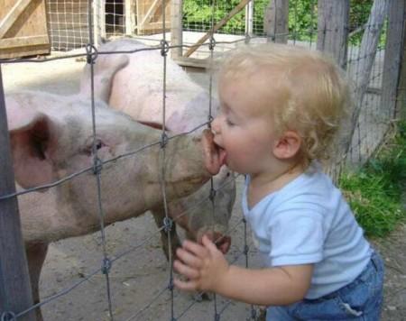 Niño y cerdo