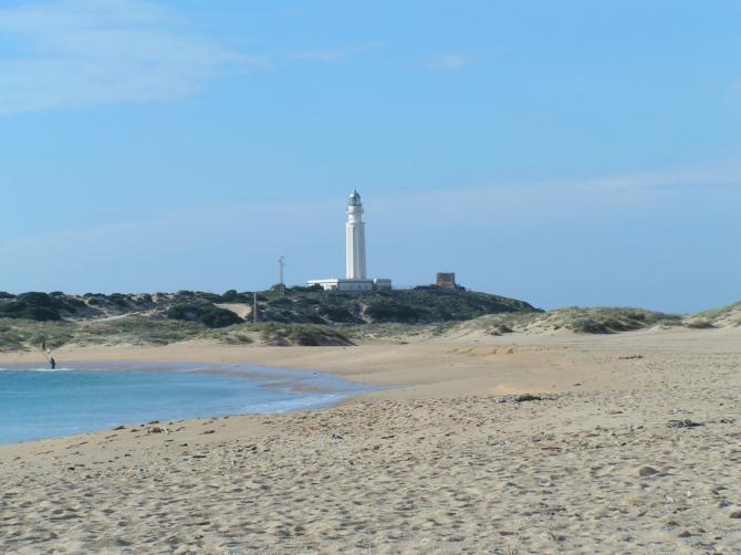 Plaża Palmar