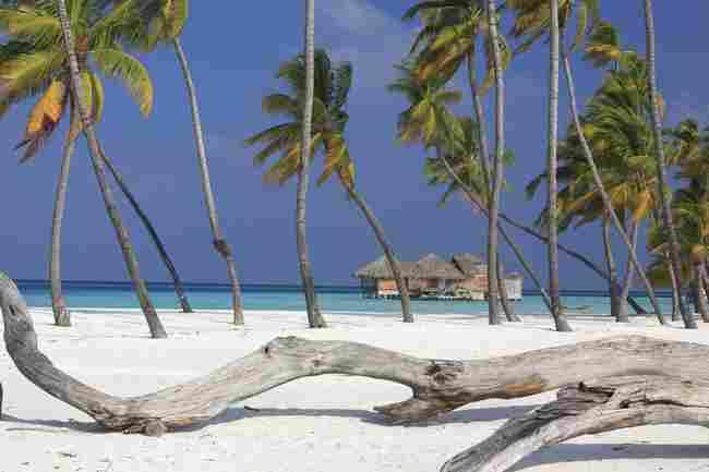 Soneva Gili (Maldives)