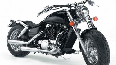 Harley Davidson yang tercantik