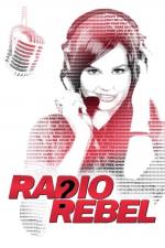 라디오 레벨