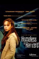 Una indigente en Harvard