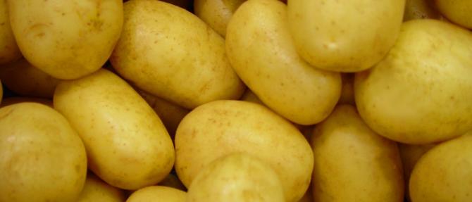 Sebuah syarikat yang mustahil: kentang dan bawang