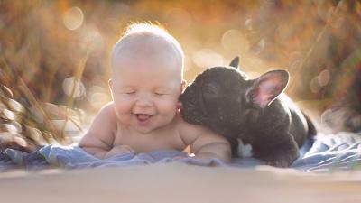 아기와 프랑스 불독은 같은 날에 태어 났으며 그들이 형제라고 믿습니다.